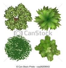 top view trees top view tree elements for landscape design eps