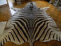 zebra skin rug ebay rugs ideas