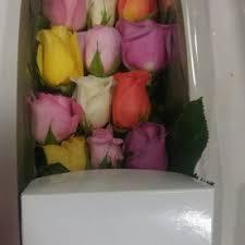 philadelphia flower market i u0027m sorry flower delivery