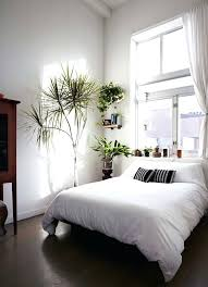 Modern Minimalist Bedroom Design Minimalist Bedroom Ideas Bedroom Of Plants Modern Minimalist