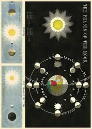 cavallini poster cavallini vintage school poster phases of the moon kado in huis