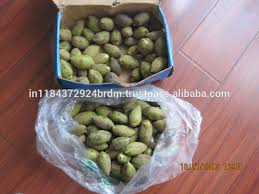 tree seeds tree seeds suppliers and manufacturers at alibaba