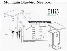 cool bird house plans house plan nestboxes bluebird house plans slot entrance mountain