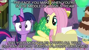 Mlp Fluttershy Meme - mlp meme imgflip