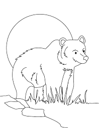 brown bear coloring pages 99 free coloring book