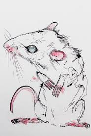 white rat and rabbit sketch u2014 oddkness