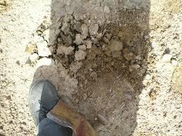 Backyard Soil Soilduck Soil Myths 3 Clay Breaker Is Not Always Your Best Friend