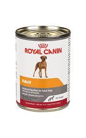 labrador retriever dry dog food royal canin breed health