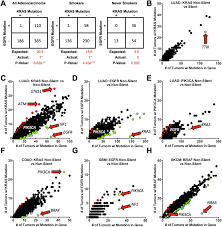 evidence that synthetic lethality underlies the mutual exclusivity