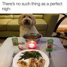 Perfect Date Meme - best date ever wholesomememes