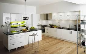 Kitchen Cabinets Remodeling Ideas Diy Contemporary Kitchen Cabinets Roy Home Design