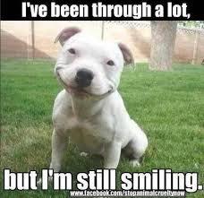 Keep Smiling Meme - metaspoon note to self always keep smiling photo facebook