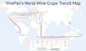World Map France by The Vinepair World Wine Grape Transit Map