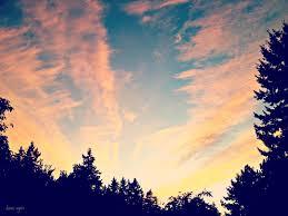 diane again sunset chaser