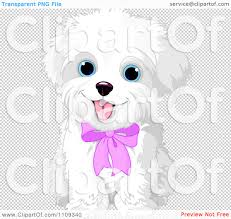 bichon frise cute clipart cute bichon frise or maltese puppy dog wearing a pink bow