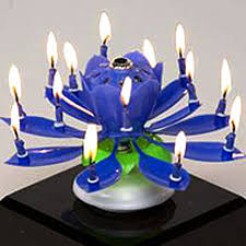 spinning birthday candle musical flower birthday candle this is best b day candle yet