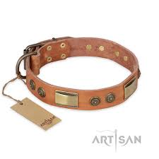 Comfortable Dog Collar Lost Desert Fdt Artisan Leather Boxer Collar With Brass