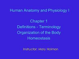 Human Anatomy And Physiology Chapter 1 Human Anatomy And Physiology I Chapter 1 Definitions Terminology
