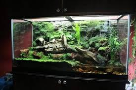 best reptile terrarium in february 2018 reptile terrarium reviews