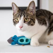 indoor hunting feeder cat food dispenser doc u0026 phoebe u0027s cat co