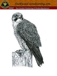 Wood Carving Patterns Birds Free terry u0027s niche peregrine falcon free patterns