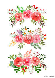 Wedding Flowers Drawing Vector Flowers Set Colorful Floral Collection With Isolated