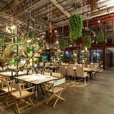 hypothesis turns warehouse into plant filled vivarium restaurant