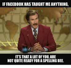 Spelling Meme - iffacebookhas taught meanything it s thatalot of you are not quite