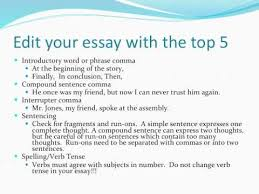 Resume Examples Autobiography Essay Example For College     Bro tech