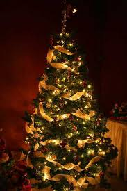 nice design christmas tree ribbon how to decorate a designer look