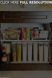 Kitchen Cabinet Organizer Ideas Cabinet Steps In Organizing Kitchen Cabinets Elegant Kitchen