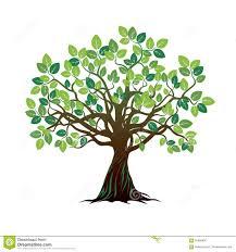 color tree and roots vector illustration illustration 65885990