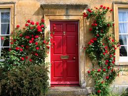 flowering vines between red front entry door and vintage various