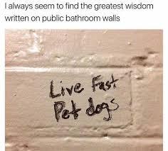 Public Bathroom Meme - dopl3r com memes greatest wisdom found in public bathroom walls