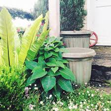 Ready For Spring by Antique Painted Garden Pots Hometalk
