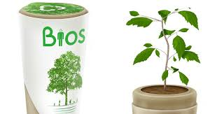 bios urn bios urn will turn you into a tree after you die bored panda