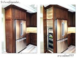 built in refrigerator cabinet refrigerator cabinet surround travelcopywriters club