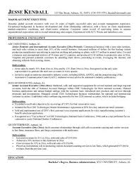 Sample Resume Format For Accounts Executive by Example Digital Marketing Account Executive Resume Free Sample