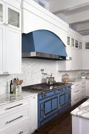 white and blue kitchen features white shaker cabinets adorned with