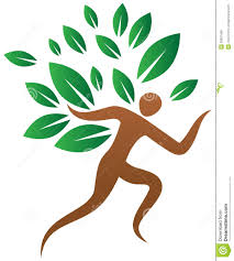 human tree stock vector image 39681498