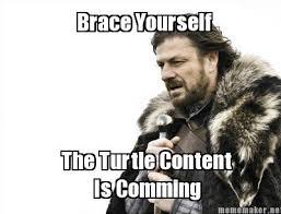 I Like Turtles Meme - i like turtles