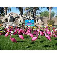 24 pink flamingos and a you ve been flocked