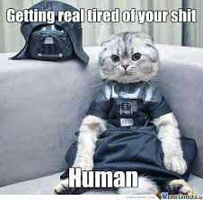 Getting Real Tired Meme - getting real tired of your sh t human by djangoo meme center