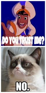 No Meme Cat - grumpy cat meme grumpy cat pictures and angry cat meme