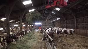 chambre d agriculture auvergne les vidéos des chambres d agriculture