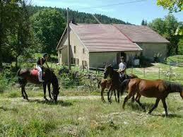 chambre d hote equitation gîte équestre à longchaumois pour cavaliers et chevaux location