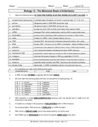 notice section   rna and protein synthesis worksheet answers  with dna protein synthesis keypdf from usernoticescom
