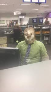 Sloth Asthma Meme - this dmv employee dressed up as a sloth on halloween