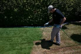 Green Paint California Residents Are Painting Their Lawns Green