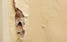 humidité dans chambre comment lutter contre l humidite dans une chambre traiter mur